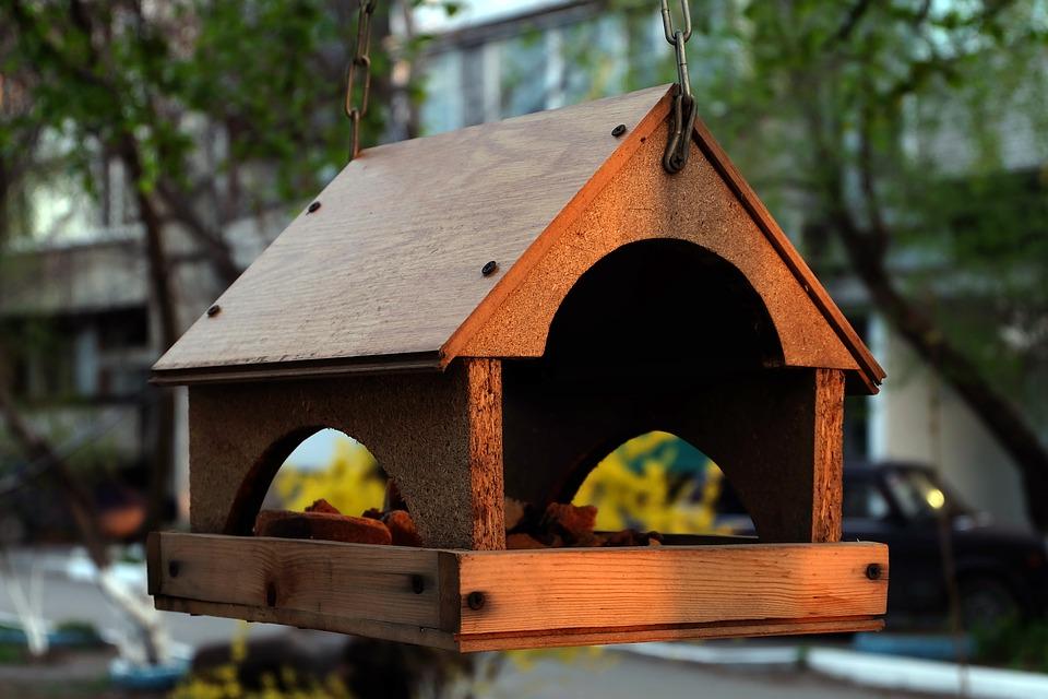фото кормушек для птиц красивых и легких дерматит